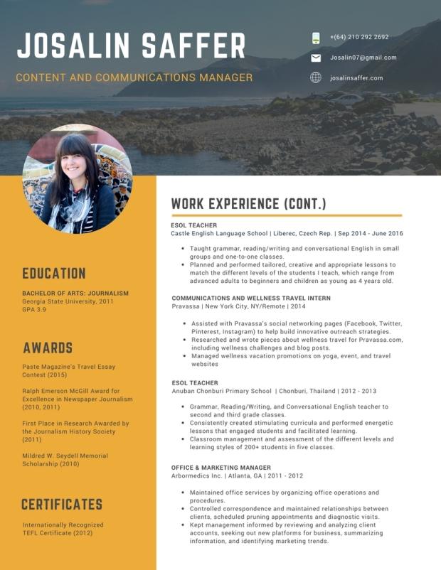 2017 Saffer CV (5)